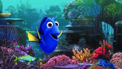 Findet Dorie ©2013 Disney•Pixar