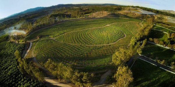 Unsere große kleine Farm (c) Prokino Filmverleih GmbH